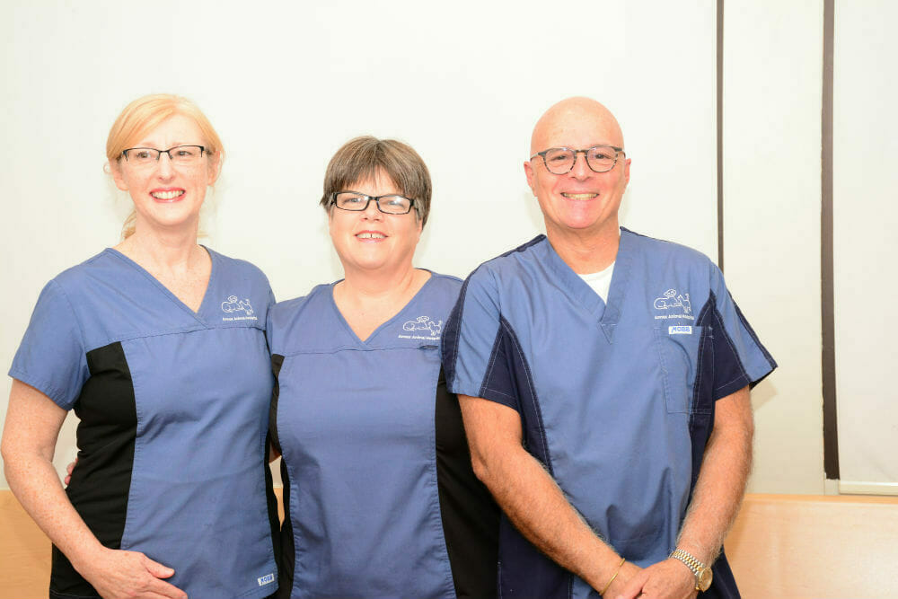 Annex animal hospital management team
