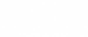 logo of annex animal hospital in toronto ontario