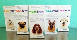 Boxes of Bravecto chewable tablets
